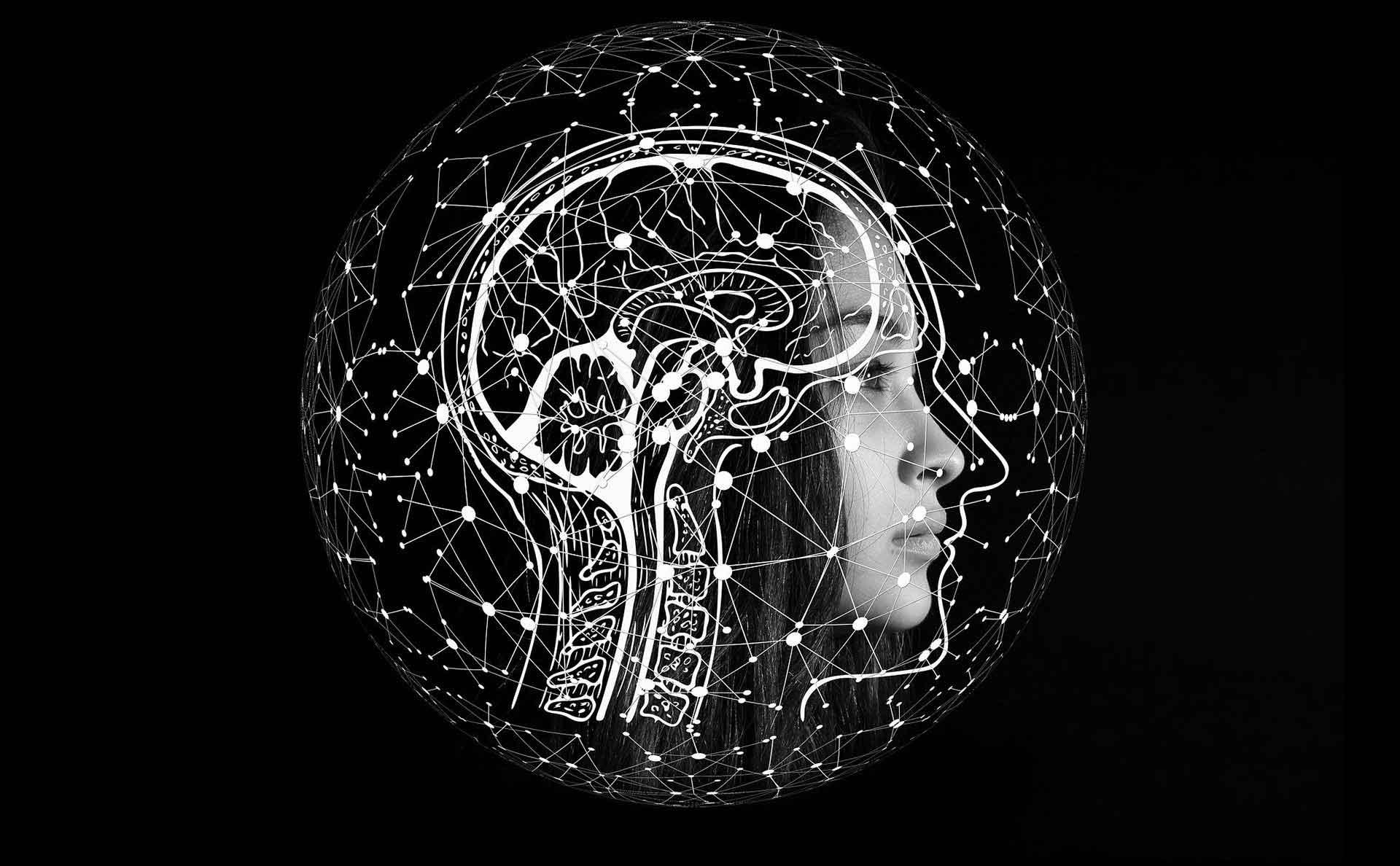 cours de magie en ligne paulmagie shéma mental mindset magie